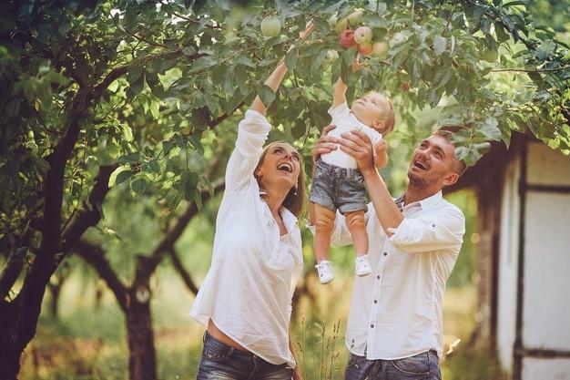 Ayuda con la tarea: 4 consejos para padres sobre cómo hacer que la tarea sea divertida